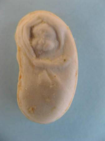 bébé jesus